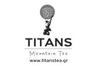 TITAN STEA